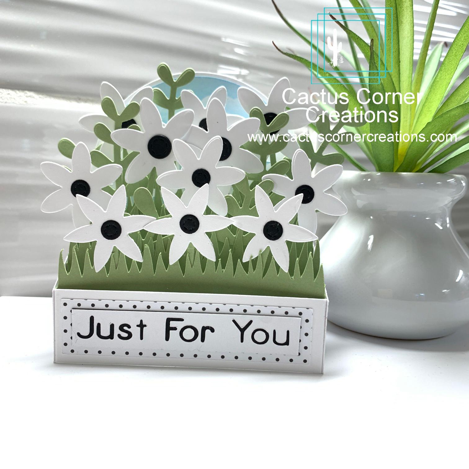 Daisies Box Card